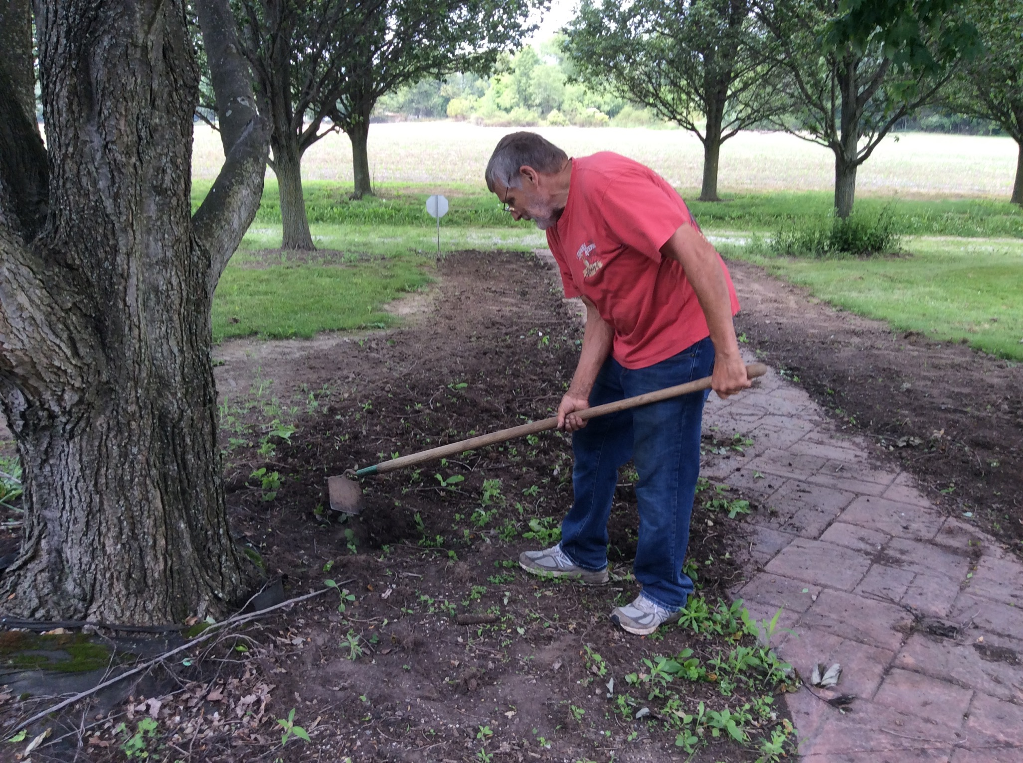 preparing soil for wildflower garden