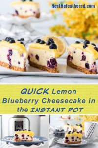 lemom cheesecake with blueberries