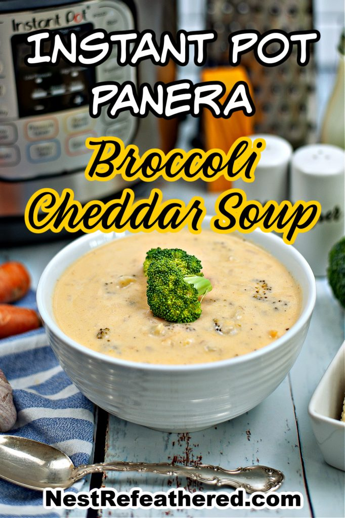 cheddar cheese broccoli soup in bowl